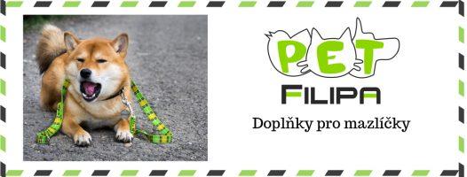 filipa_web